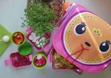 Najlepsza torba termiczna na lunch dla dziecka