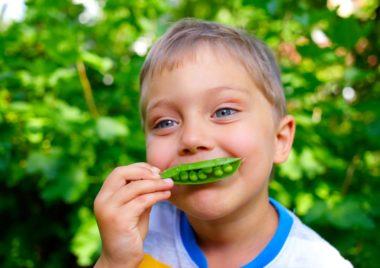jem zielone jedzenie wyzwanie