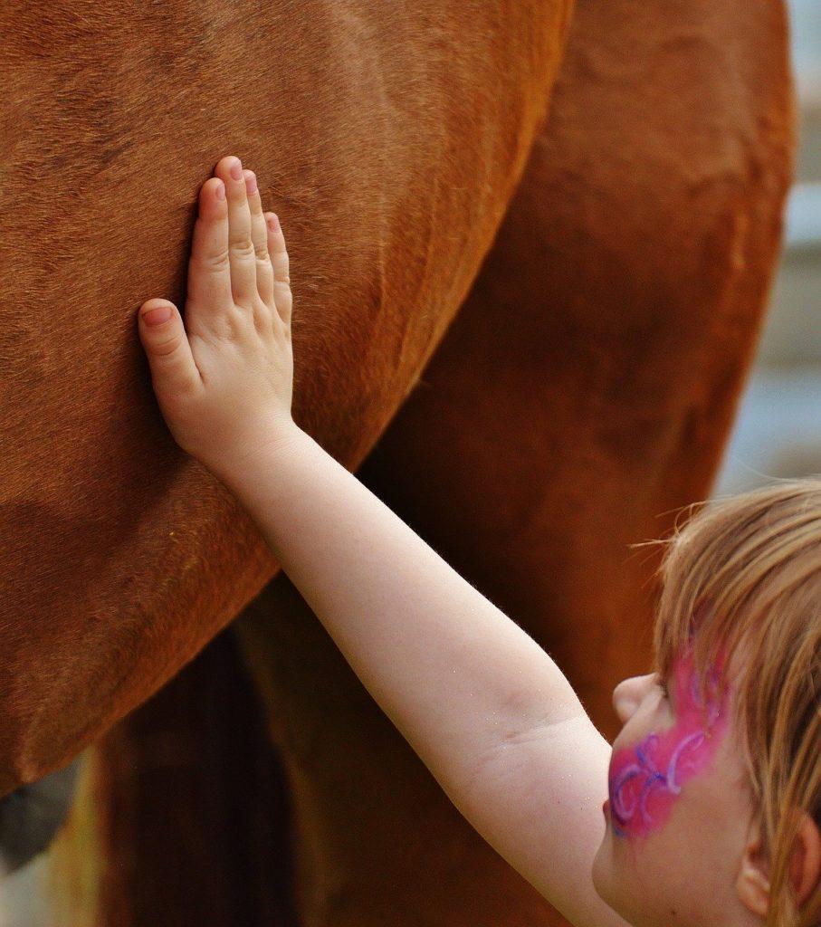 polkolonie konne dla dzieci